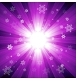 Purple color burst of light with snowflakes vector image vector image