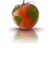 red tomato with planet earth vector image