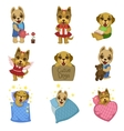 Cute Dog Cartoon Collection vector image vector image