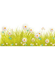 spring grass and flowers border on white vector image vector image