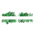 tropical leaves banners vector image
