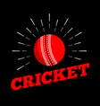cricket sport ball logo icon sun burtst print vector image