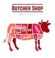 cuts beef diagram vector image