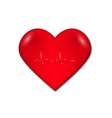 heart with graph and heart rate vector image vector image