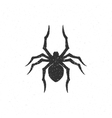 spider hand drawn vector image