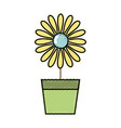 sunflower with petals inside to flowerpot vector image vector image