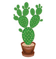 a potted plant is shown cactus opuntia with flat vector image