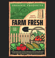 organic farm products vegetable and fruit harvest vector image vector image