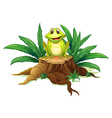 A stump with a frog vector image vector image