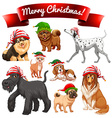 Christmas theme with dogs in elf hats vector image vector image