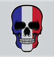 france flag head skull vector image vector image