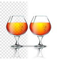 full glass of alcoholic beverage cognac vector image