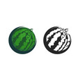 green icon of watermelon vector image vector image
