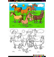 horses farm animal characters group color book vector image vector image