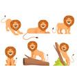 lion cartoon wild jungle animal pride happy vector image