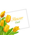 nature flower card with tulips invitation vector image