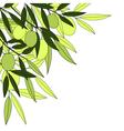 olives background vector image
