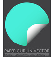 Sticker with Paper Curl with Shadow Isolated vector image vector image