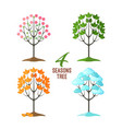 4 seasons trees collection pretty plants in vector image