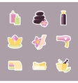 Collection of icons representing wellness vector image