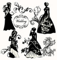collection of wedding design elements vector image