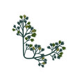 green twig natural design element can be used vector image