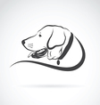 image of an dog labrador head vector image vector image