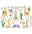 llama set baby llamas cartoon alpaca wild lama vector image