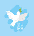 peaceful dove to worldwide harmony element vector image