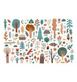 big collection set hand drawn woodland flora vector image vector image