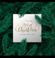 christmas and new year 3d pine tree leaf card vector image