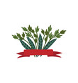 green twigs and leaves with red ribbon natural vector image vector image