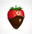 strawberry dipped in chocolate vector image vector image