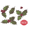 collection of hand drawn holly vector image vector image