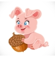 Cute cartoon happy baby pig holding a large acorn vector image