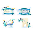 dentist services concept isolated vector image