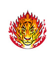 flaming tiger head on fire mascot vector image vector image
