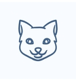 Cat head sketch icon vector image vector image