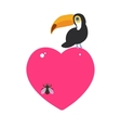 Cute Cartoon toucan bird and the fly Card design