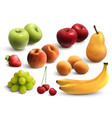 fruits realistic set vector image vector image