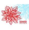 poinsettia hand drawn red flowers vector image vector image