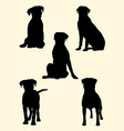 rottweiler dog silhouette 02 vector image vector image