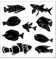 Sketch of sea Fish Doodle vector image
