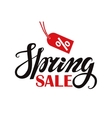 Spring saleLettering on white background vector image vector image
