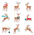 beautiful christmas deers set merry xmas and new vector image vector image