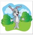 Cartoon cute hare vector image