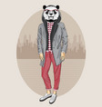 fashion panda portrait vector image vector image