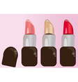 set of colorful lipstick for makeup vector image