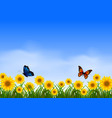 two butterfly flying in sunflower garden vector image vector image