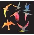 Watercolor set bird vector image vector image